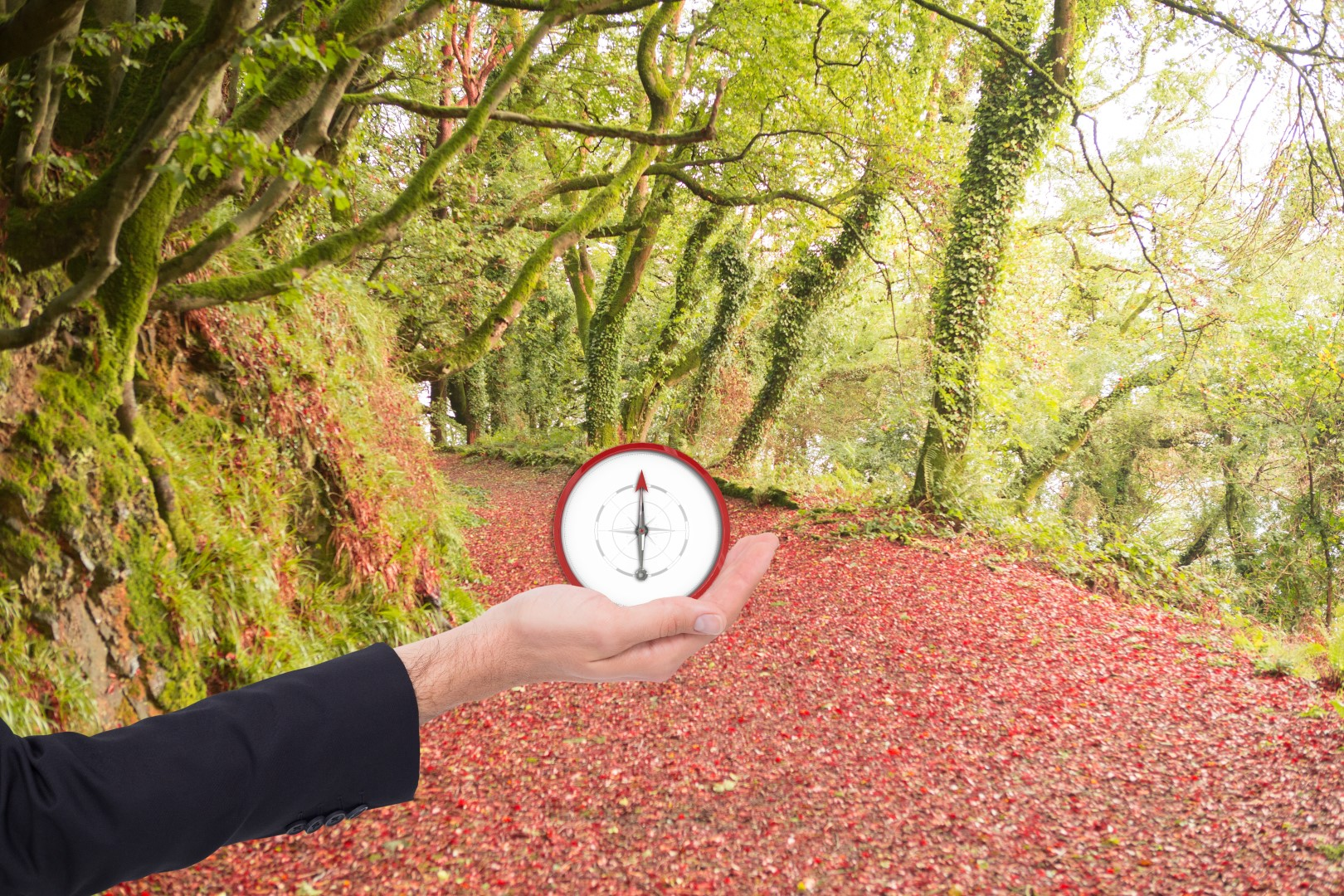Fotolia_80380449_Subscription_Monthly_XXL-Large