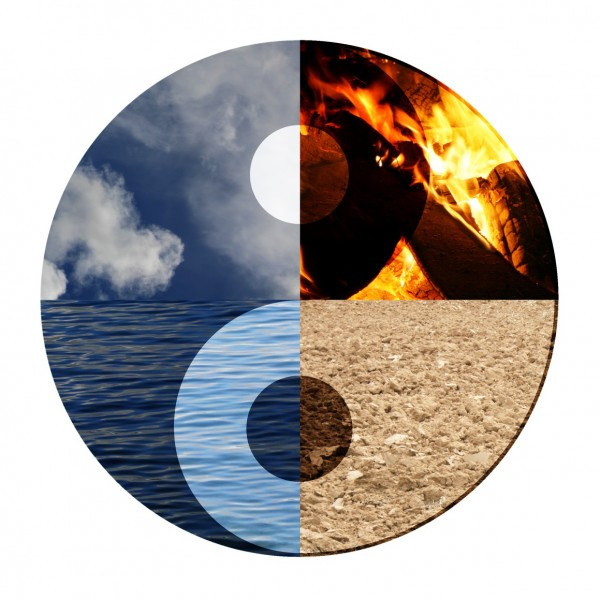 What do the five elements mean on the application?